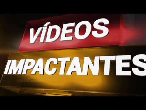 Vídeos impactantes